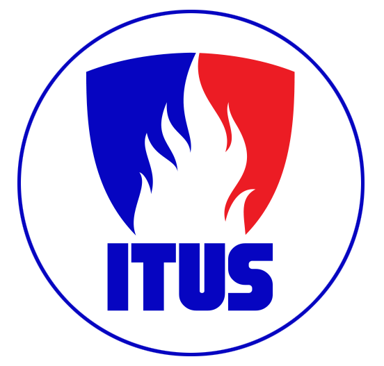 Itus Systems Logo